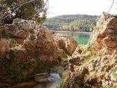 Detalle Laguna Santo Morcillo. Lagunas de Ruidera